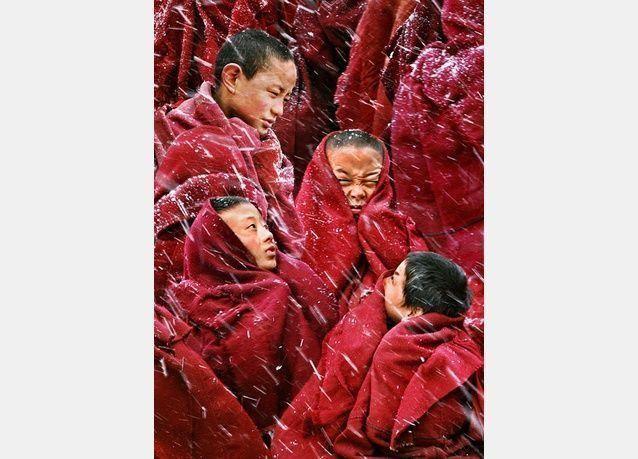 الصور المرشحة لجائزة سوني للتصوير