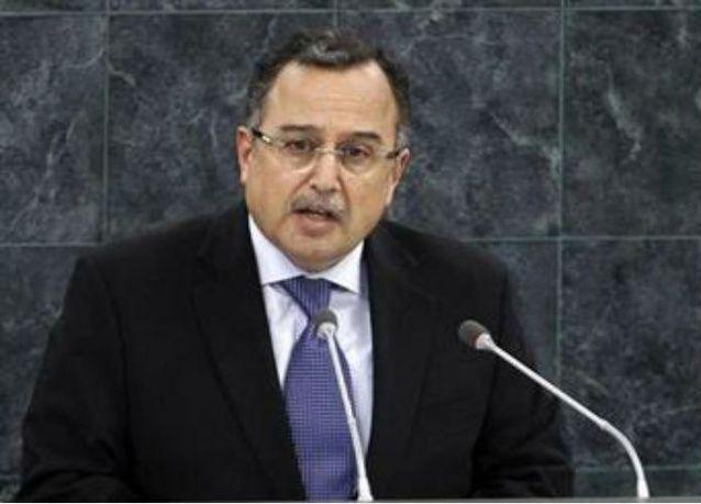 """وزير خارجية مصر: """"الربيع القادم"""" نهاية المرحلة الانتقالية"""