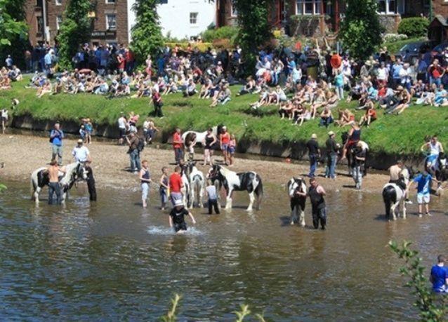 """بالصور: """"مهرجان كامبريا للخيول"""" مستمر منذ 1685"""