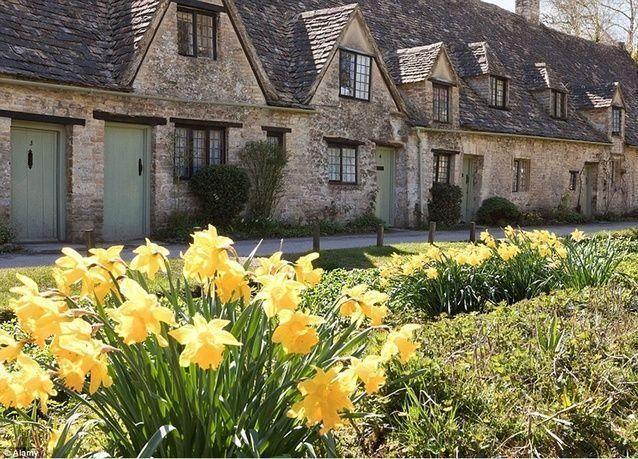 بالصور: أجمل حدائق الزهور في الربيع