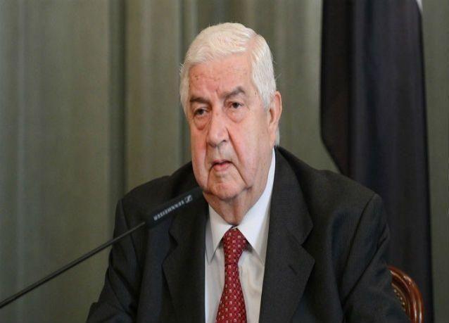الخارجية السورية : دمشق لا تمانع من الحوار بشأن الحل السياسي