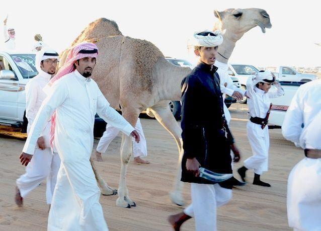 هل سيعرقل تغلغل الإبل في حياة بعض السعوديين السيطرة على فيروس كورونا؟