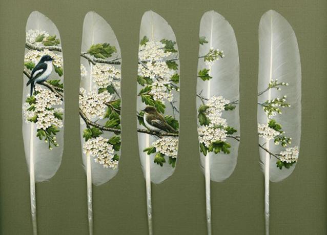 بالصور: لوحات فنية رائعة على ريش البجع