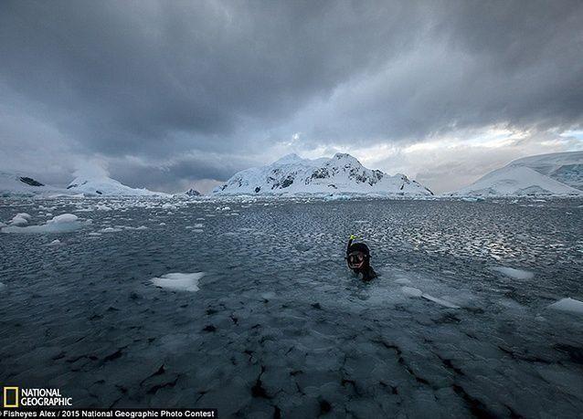 أفضل الصور من مسابقة ناشونال جيوغرافيك 2015
