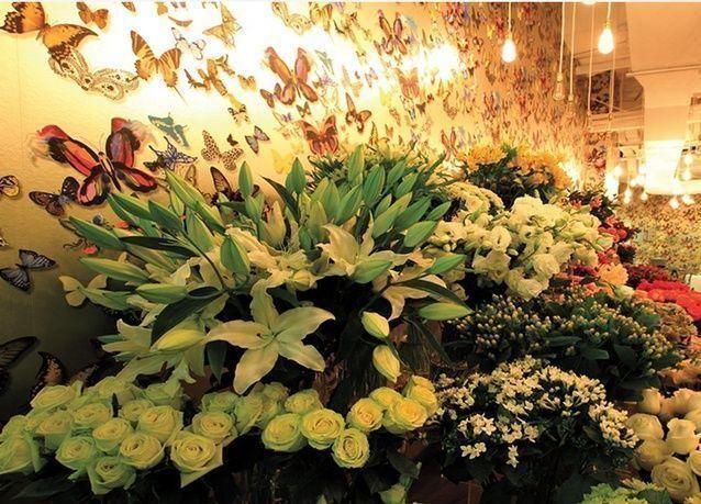 140 مليون درهم حجم تجارة الأزهار والنباتات في دبي