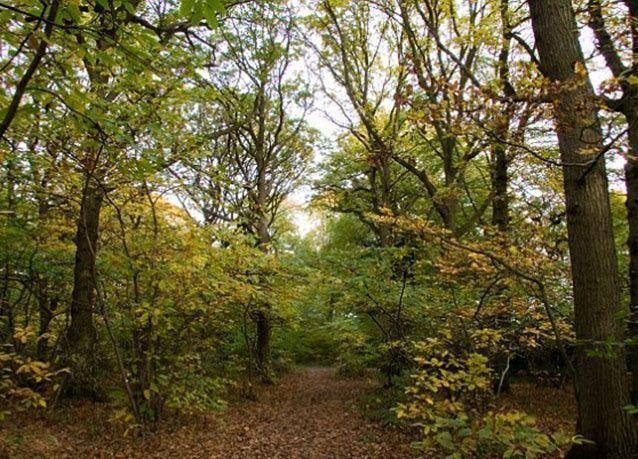 بالصور : عجائب من الطبيعة المذهلة في بريطانيا