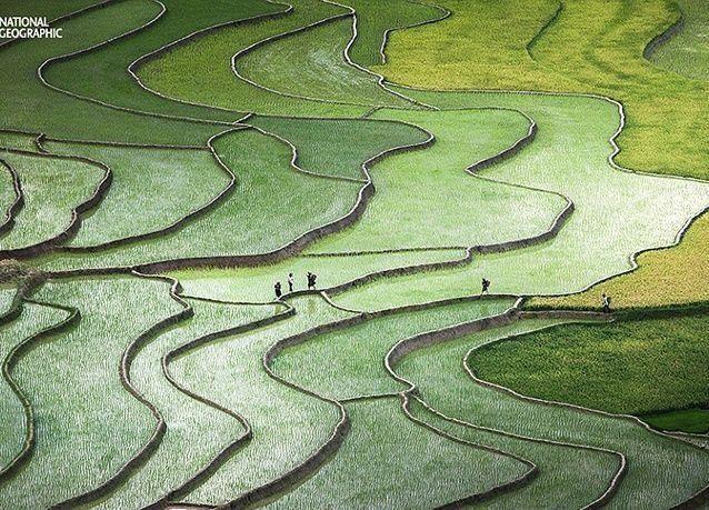 بالصور :  أجمل الصور من مسابقة ناشونال جيوغرافيك 2015