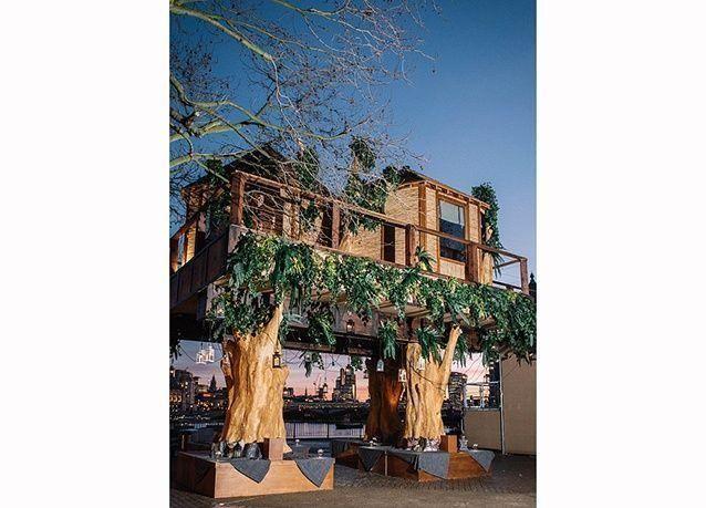 """بالصور : تصميم """"منزل شجرة"""" فاخر في وسط لندن"""