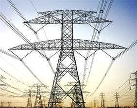 طائر يقطع الكهرباء عن عدة محافظات سعودية