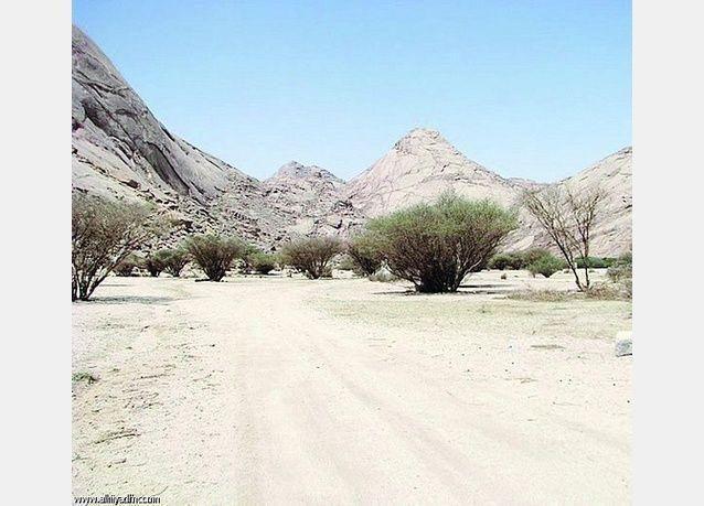 """السعودية تعلن إكتشافا كبيرا لمعدن النحاس """"البورفيري"""" في محافظة الدوادمي"""