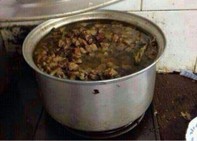 السلطات السعودية تنفي استخدام لحم القطط في أحد مطاعم المدينة