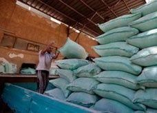 ضبط 4.3 طن من المخدرات على الحدود بين الجزائر والمغرب