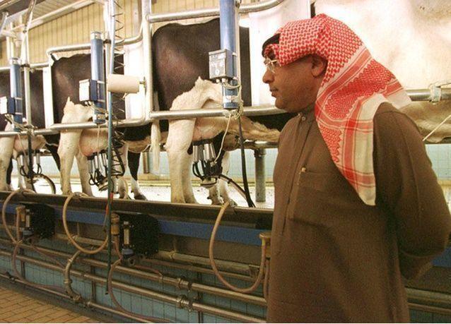 سعر الحليب في السعودية الأقل خليجياً