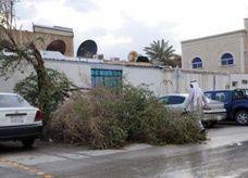 العاصمة السعودية تشهد عاصفة وأمطاراً تقتلع أشجار ولوحات وأسوار حديدية وخشبية