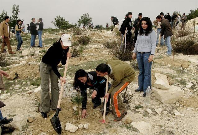 فورد تدعم عمليات تشجير المساحات الخضراء في اللاذقية