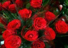 أعضاء في البرلمان الكويتي يخططون لمنع الاحتفال بعيد الحب