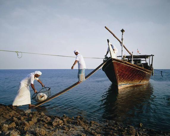 شل تعلن عن كشف للغاز في الصحراء الغربية بمصر