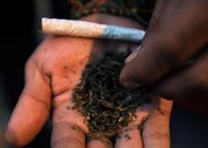 سجائر الماريجوانا في اسرائيل للاستخدم الطبي