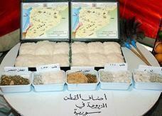 سورية تنفق 2 مليار ليرة على البحوث الزراعية سنويا