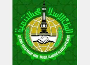 الإسلامي للتنمية والبركة وقطر يؤسسون بنكا إسلاميا بمليار دولار