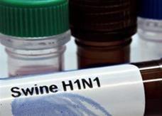 دول الخليج تخسر ملايين الدولارات لعدم الشراء الموحد للقاح الأنفلونزا