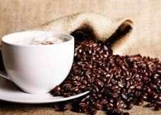 القهوة والدسم تقللان من فرص الإنجاب