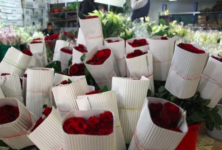 توقعات ببيع ربع مليون وردة في الأردن بمناسبة عيد الحب