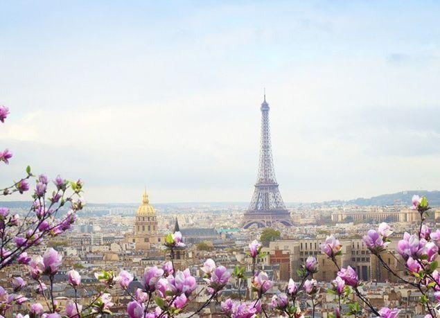 بالصور : مدن العالم تستقبل الربيع بالألوان الزاهية