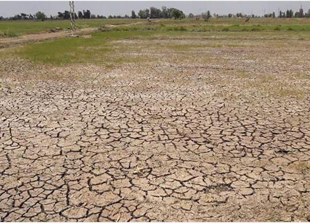 الجفاف يدفع مصريين للتيمم