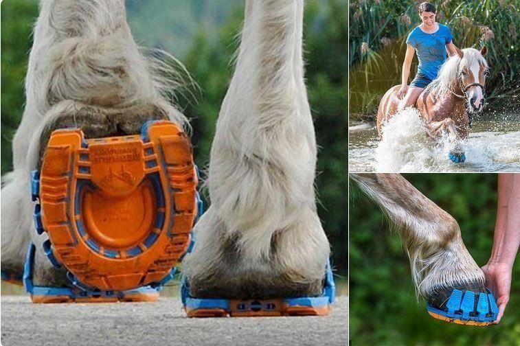 أول أحذية رياضية للخيول تمتص الصدمات