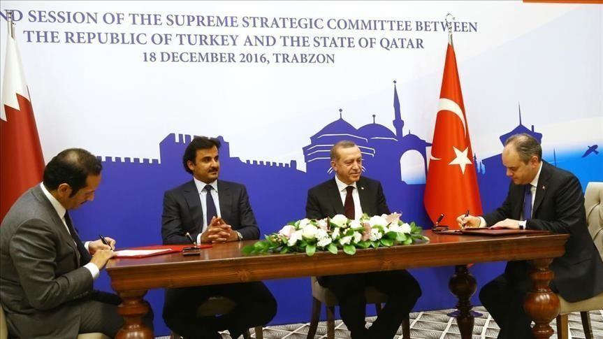 بحضور أردوغان وتميم.. تركيا وقطر توقعان مذكرات تفاهم في مجالات عدة