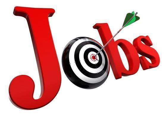 """""""تعداد عجمان"""" يستقبل طلبات وظائف الباحثين الميدانيين حتى 29 ديسمبر"""