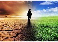 دراسة- نصف أكبر 500 مستثمر في العالم لا يفعلون شيئا للتصدي لظاهرة التغير المناخي