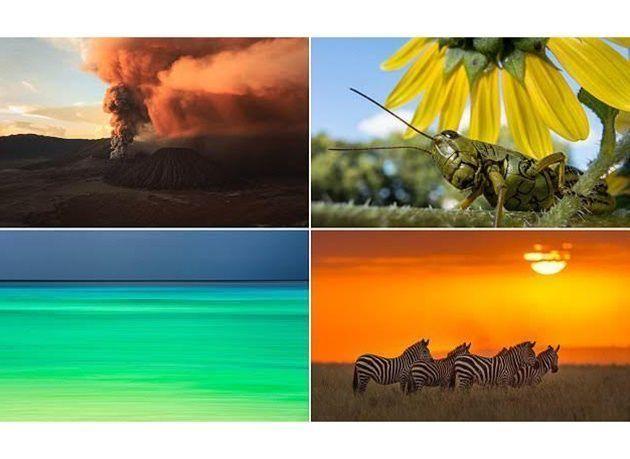 أجمل الصور المرشحة في مسابقة ناشيونال جيوغرافيك لمصوري الطبيعة 2016