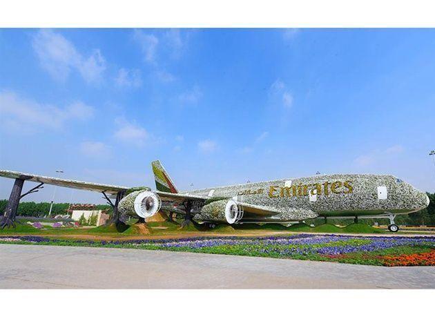بالصور : تزيين مجسم ضخم لطائرة إماراتية A380 بالزهور في حديقة ميراكل غاردن بدبي