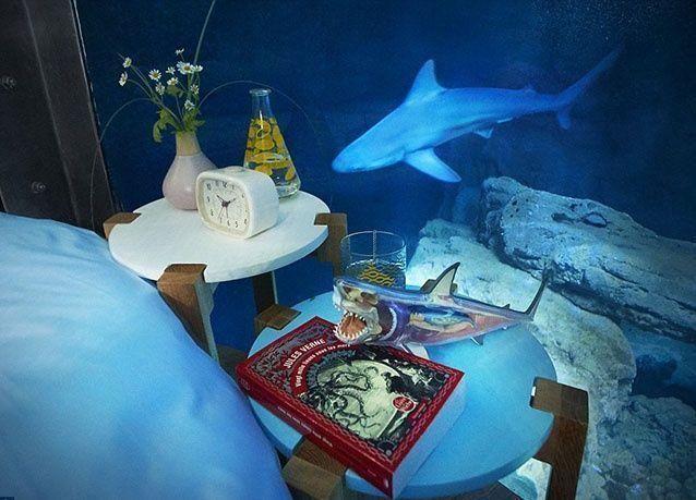"""بالصور : لأول مرة .. غرفة نوم تحت الماء وسط أسماك القرش في """"أكواريوم دو باريس"""""""