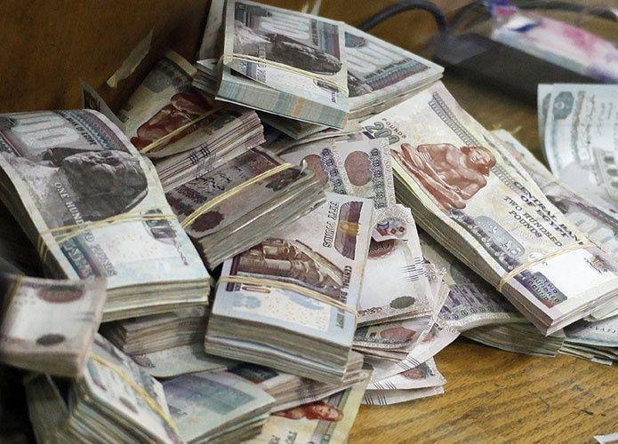 دومتي المصرية تتوسع في أنشطتها باستثمار 240 مليون جنيه في 2016-2017