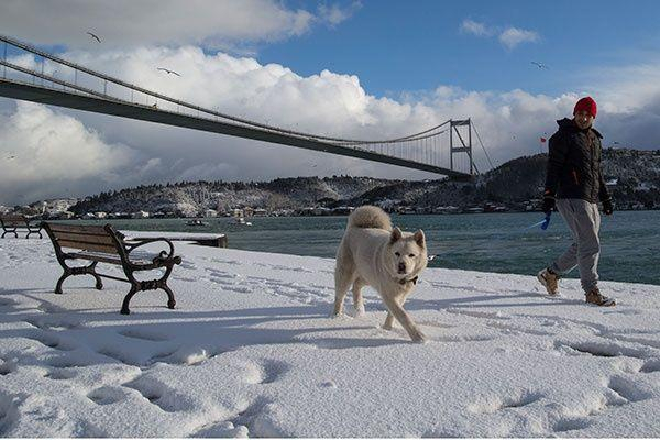 إغلاق مضيقين بحريين تركيين أمام حركة الشحن بسبب الثلوج