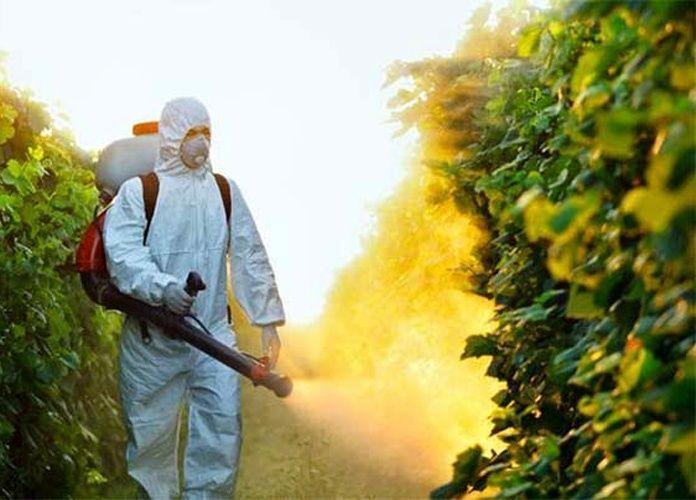 مصر: برنامج الاستخدام الآمن للمبيدات الزراعية يوفر 50 ألف فرصة عمل