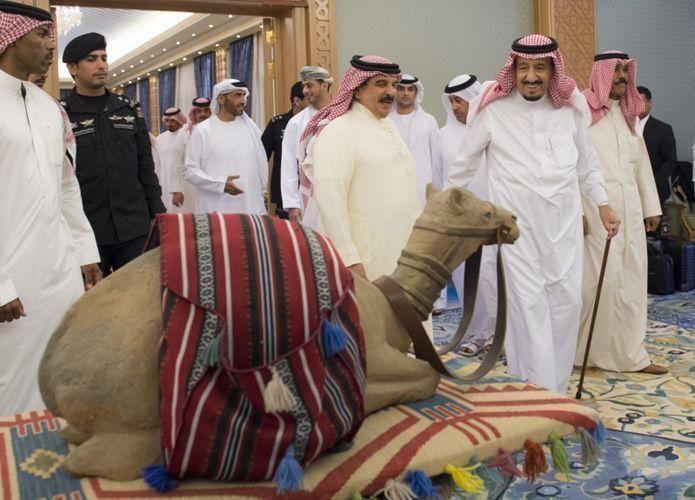 فيديو: مواطن سعودي يطلب من الملك سلمان السلام عليه في مهرجان
