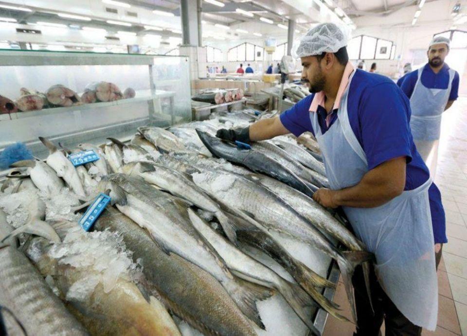 الإمارات تؤكد سلامة المأكولات البحرية المحلية والمستوردة