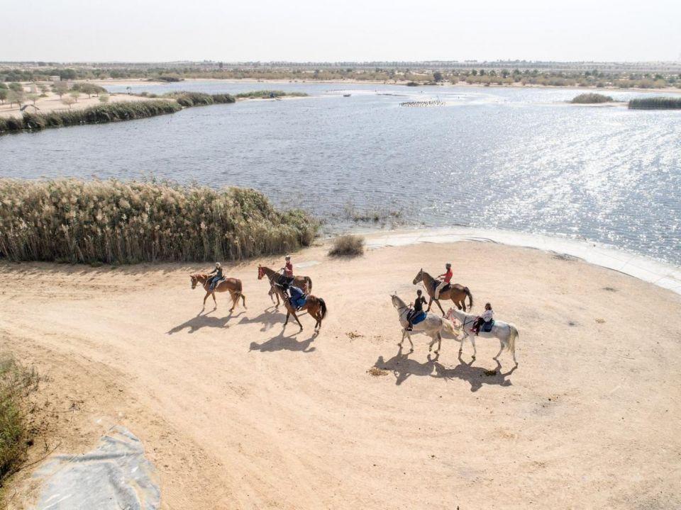 شاهد صورا من دبي والإمارات لا يعرفها معظم المقيمين فيها