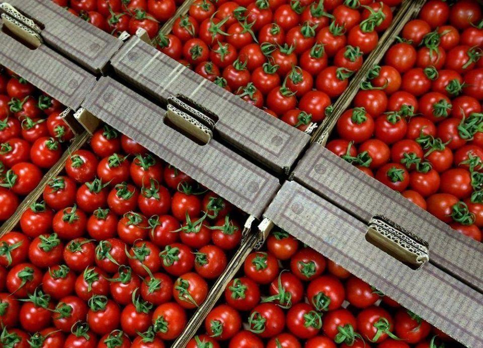 ما عدا الطماطم.. تركيا وروسيا تتفقان على إلغاء القيود التجارية