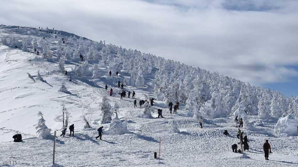 وحوش الثلج في اليابان