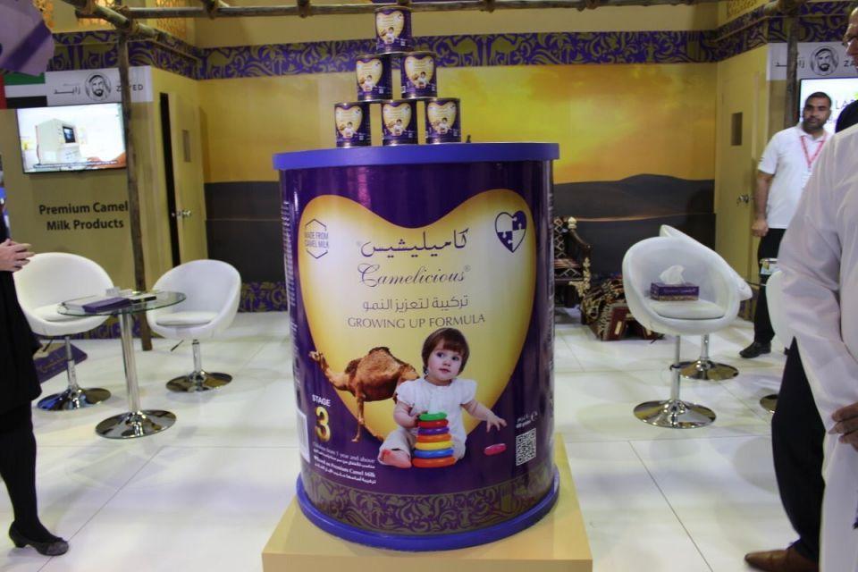شركة إماراتية تنتج أول حليب إبل مخصص للأطفال في العالم