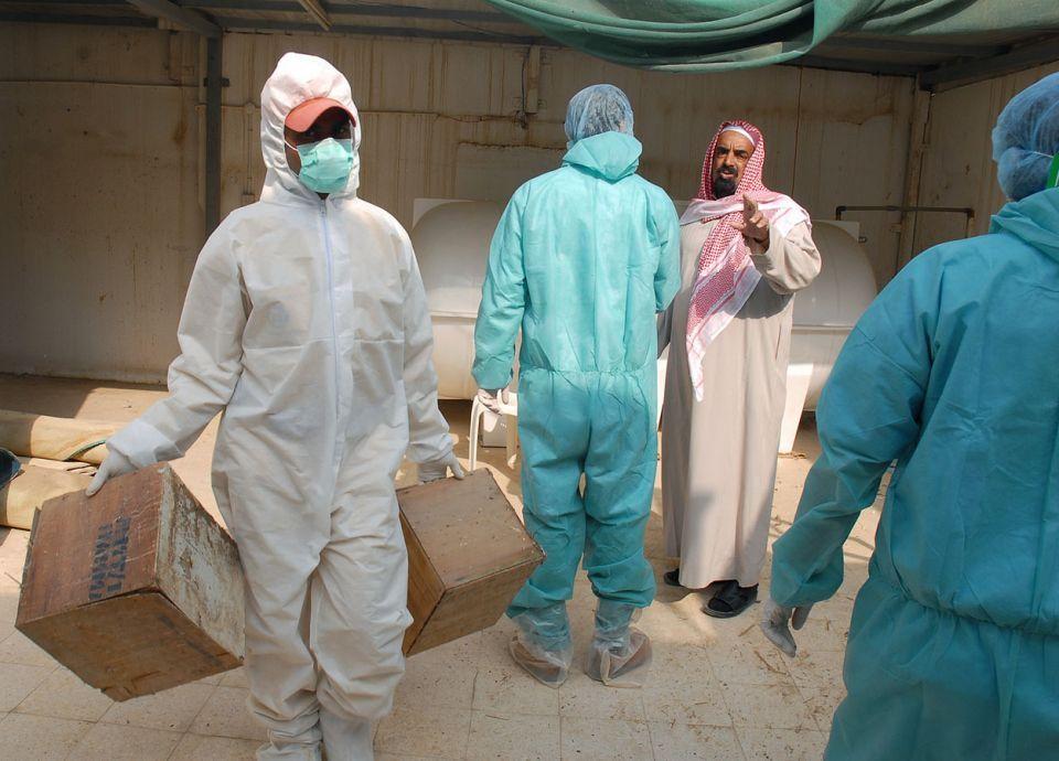 السعودية تتخلص من ربع مليون إصابة بإنفلونزا الطيور
