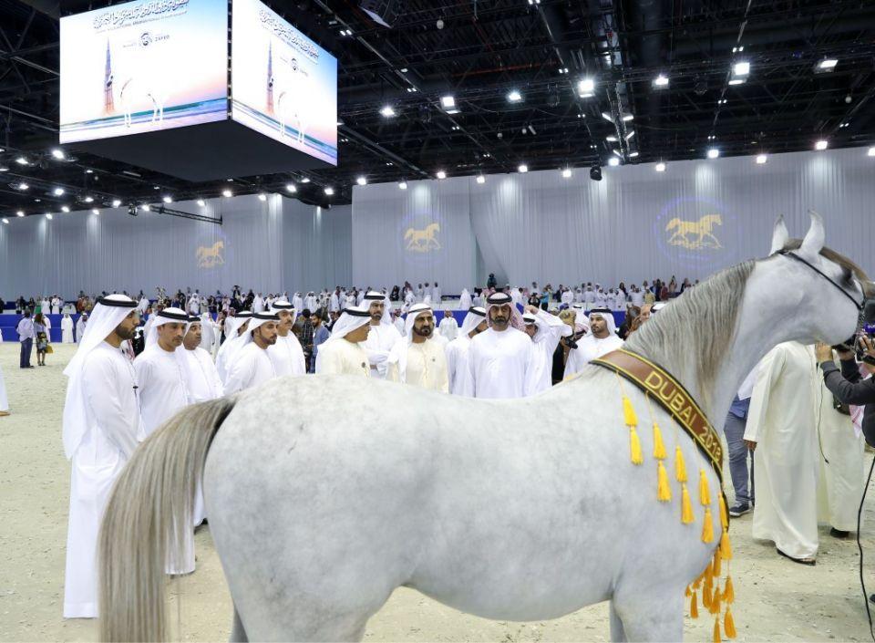 بالصور ...محمد بن راشد يشهد حفل ختام بطولة دبي الدولية للجواد العربي