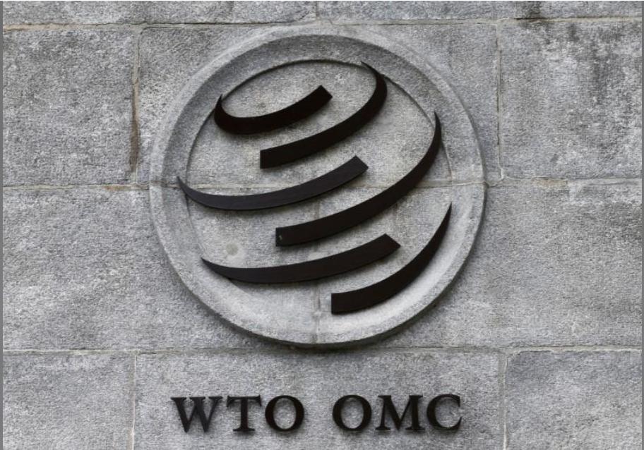 منظمة التجارة العالمية: دول الخليج تفرض رسوم وقائية على واردات الحديد