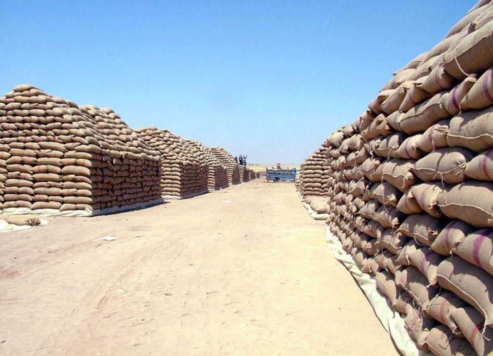 مصر آلاف الأطنان من القمح الروسي الفاسد