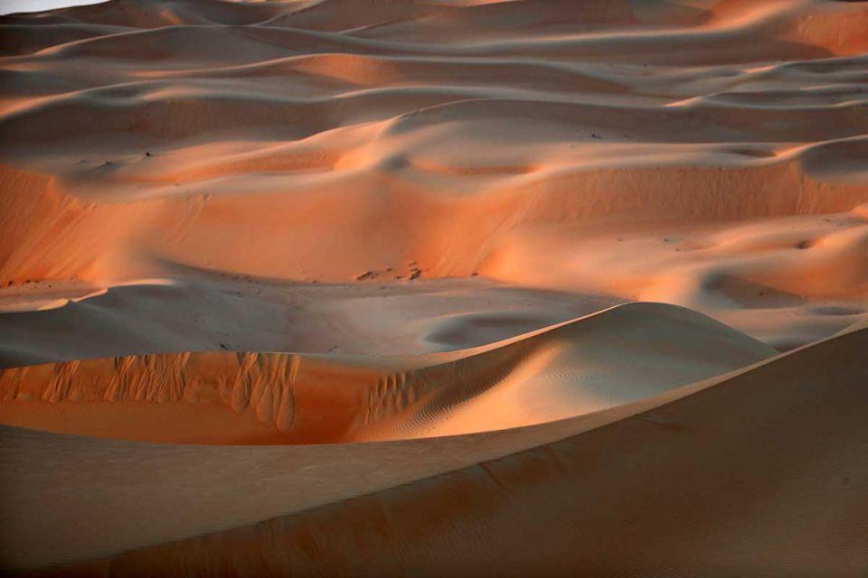 اتفاقية بين «موارد» الإماراتية وتشونغ تشينغ الصينية لزراعة الأراضي الصحراوية